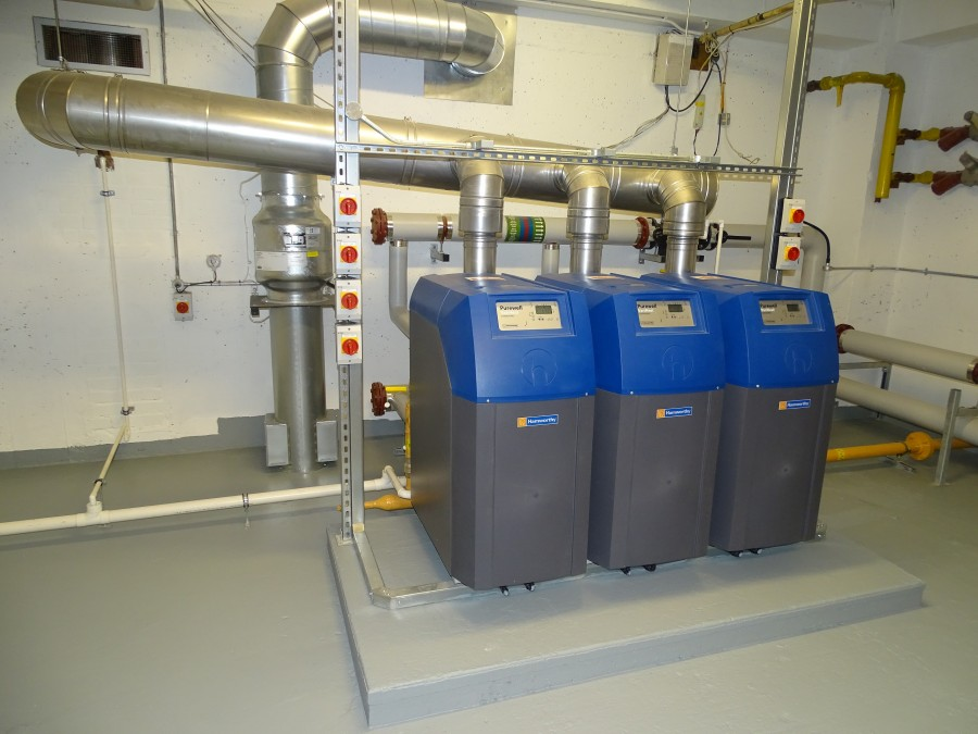 Boilers and flue system